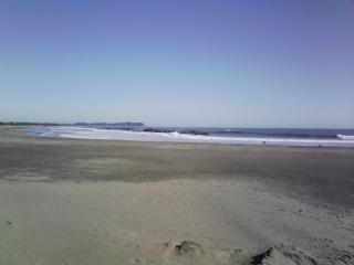 日在浦海浜公園から見える海